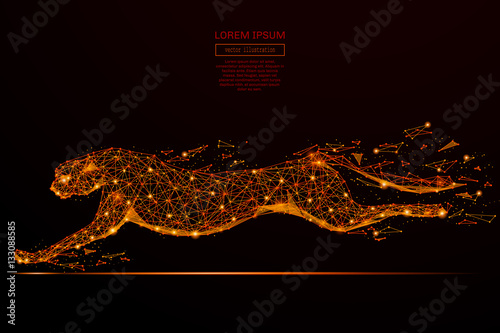 Fotografía  Abstract mash line and point cheetah in flames style on dark background with an inscription