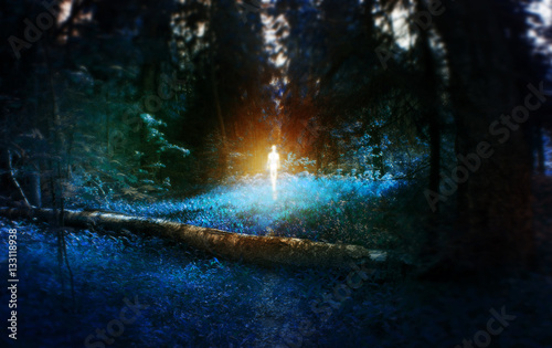 Poster de jardin UFO magic blue forest with fallen birch log with age, with the figure in the middle, ufo, monster, mystic fairy tale concept, wallpaper