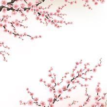 Invitation Cards With A Blossom Sakura. EPS 10