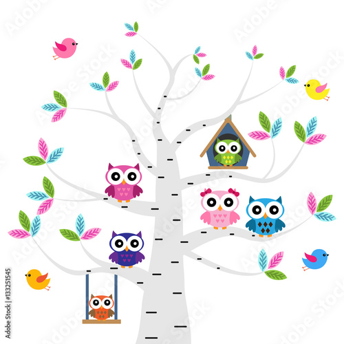 Photo Stands Owls cartoon Vector set of a colorful owls at the birch tree