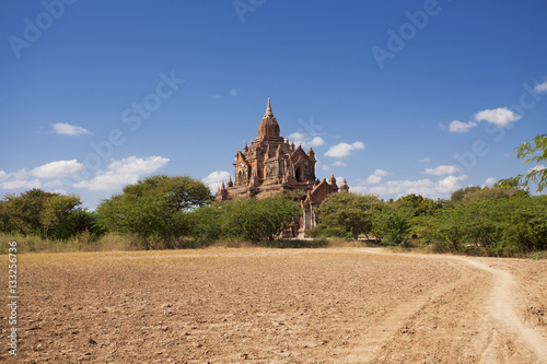 Dirt road leading to a temple in Bagan Poster