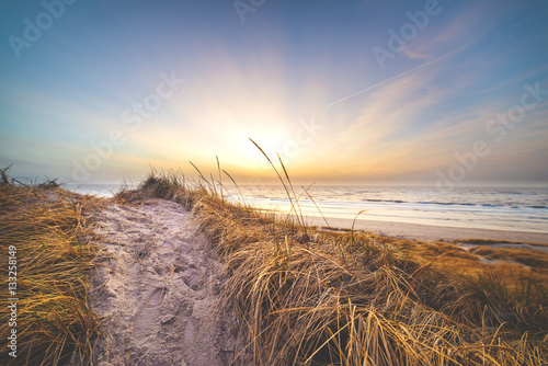 Dune in the evening in Denmark Canvas Print