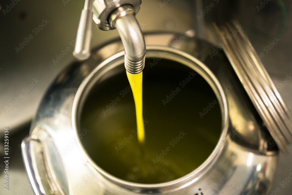 Fototapety, obrazy: Processing of olive oil in a modern farm.