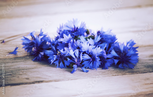 Photo Stands Floral woman Beautiful wildflowers cornflowers