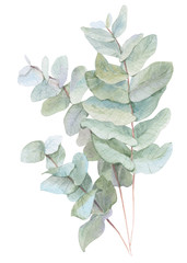 Plakat watercolor illustration leaves