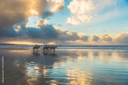 Fotografie, Tablou  Horses walking on the beach at sunset