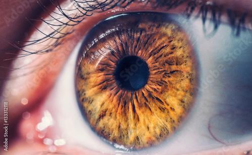 Obraz Macro pupil retina human colse eye photo - fototapety do salonu