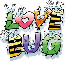 Cartoon Love Bug Text