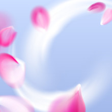 Fresh Air Flow With Flying Vector Pink Petals In The Blue Sky Background