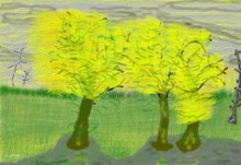 Autumn Trees Ala Van Gogh  O181