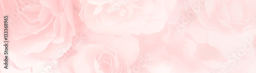sweet color roses flower in pastel tone with blurred style for background pattern texture - fototapety na wymiar