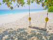 Swings at tree on the tropical beach