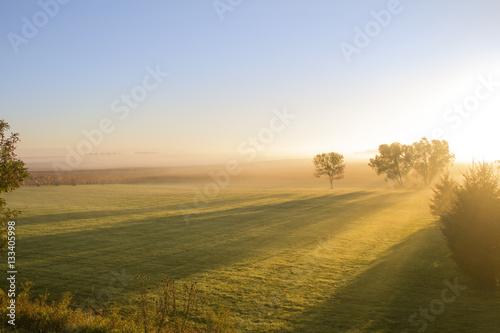 Photo  Long Shadows in Grassy Field