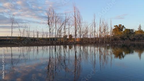 Water lake reflection trees