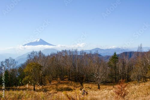 丹沢からの眺望