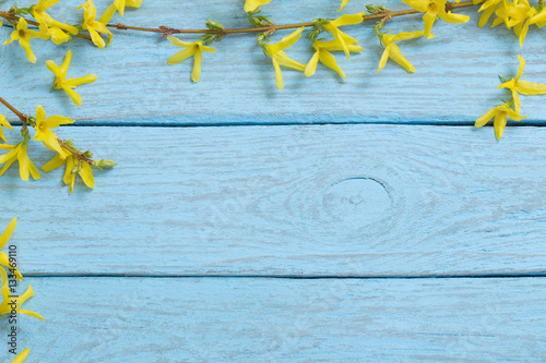 Fotografie, Tablou Spring yellow flowers in the old blue wooden background