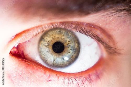 Foto op Aluminium Iris beautiful human eye, macro, close up blue, yellow, brown, green