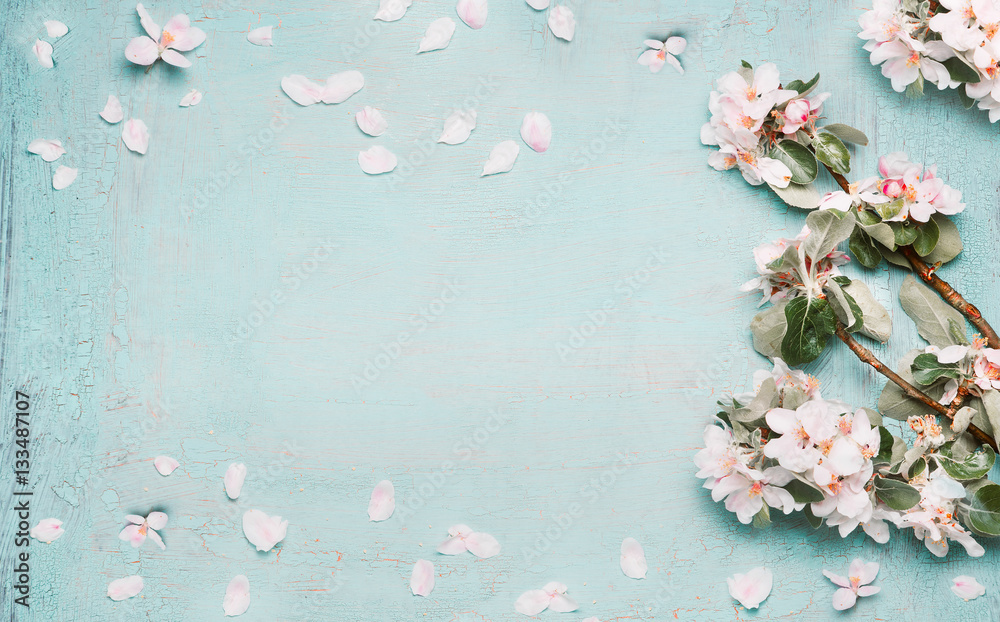 Fototapety, obrazy: Spring nature background with lovely blossom in blue  pastel color, top view, banner. Springtime concept