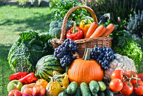 Variety of fresh organic vegetables and fruits in the garden © monticellllo