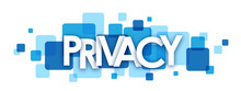 PRIVACY Vector Letters Icon