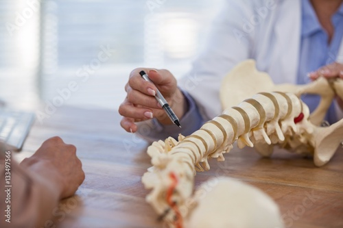 Fotomural  Doctor explaining anatomical spine to patient