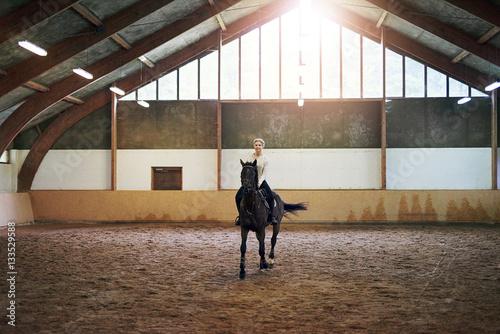 Poster Equitation Female riding dark horse in indoor paddock