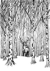 FototapetaWildlife carbon drawing. Deer in winter forest