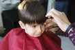 haircut of small boy in barbershop