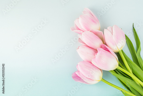 Photo  Gorgeous tulips for holidays.