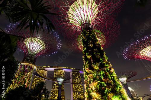 Photo  Supertree Grove and Marina Bay Sands