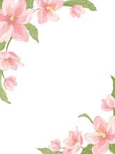 Corner Frame Template With Sakura Magnolia Hellebore Flowers On White Background. Vertical Portrait Orientation. Vector Design Illustration Floral Garland Element For Decoration, Card, Invitation.