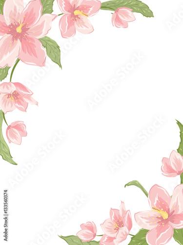 Corner Frame Template With Sakura Magnolia Hellebore Flowers