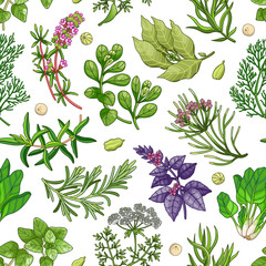 Fototapeta Warzywa Vector greenery seamless pattern with spices and herbs. Decorative colorful composition on white background