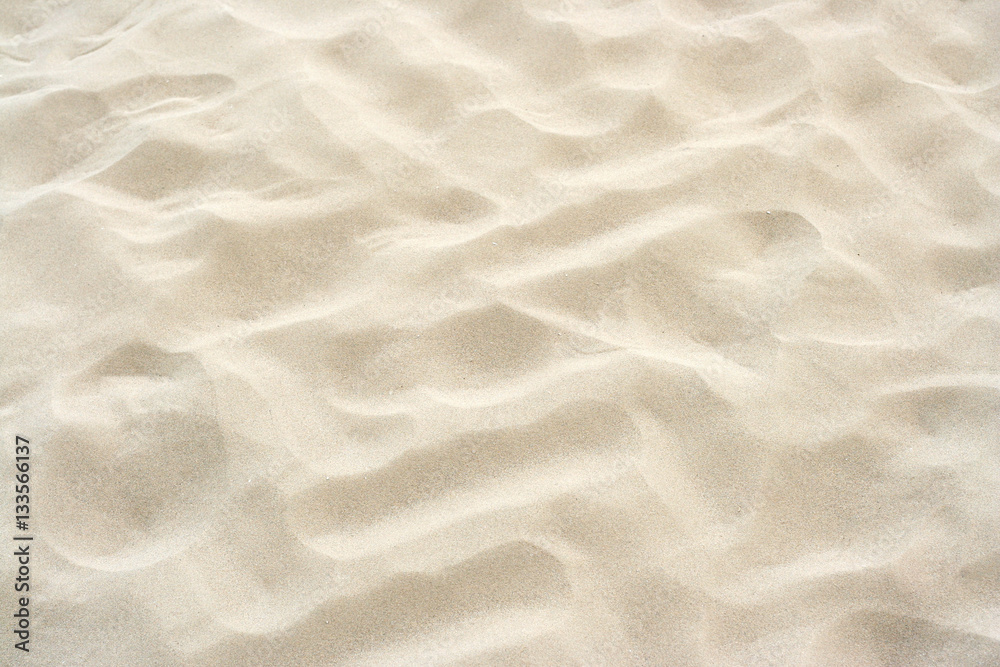 Fototapeta Beach sand background