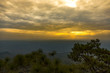 Landscape of Phukradung national park of Thailand