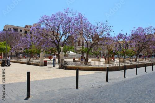 Fotografía  Plaza de la Merced, Málaga, Andalucía, España