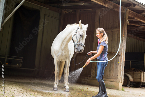 Photo  Woman Showering Her Horse