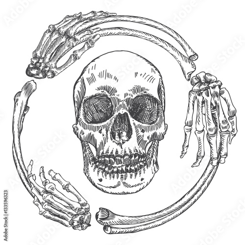 Skull in the frame made of hands bones. Occult witch craft magic ...