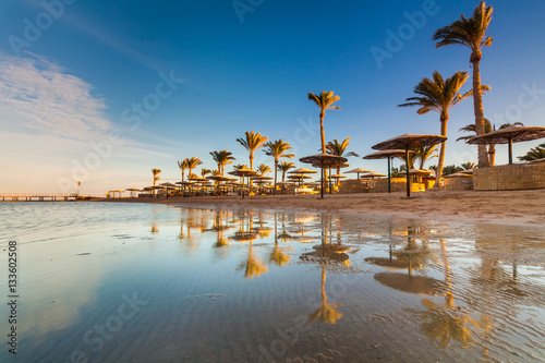 Cadres-photo bureau Egypte Beautiful sandy beach with palm trees at sunset. Egypt