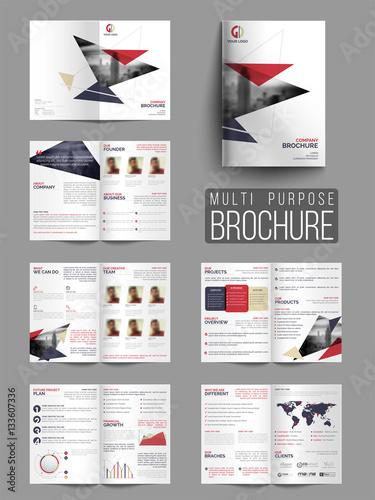 Obraz na plátně  Professional Multi-Purpose Business Brochure Set.