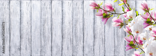 Fotobehang Orchidee Magnolia with orchid on background of shabby wooden planks