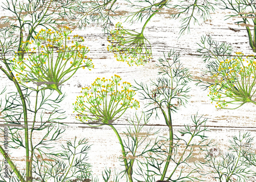 Watercolor pattern of fennel plant - 133611310