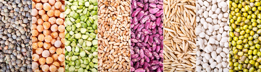 Fototapety, obrazy: collage of various cereals, seeds, beans and grains
