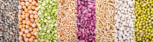 Fotografie, Obraz  collage of various cereals, seeds, beans and grains