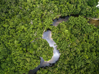 Obraz na Szkle Top View of Amazon Rainforest, Brazil