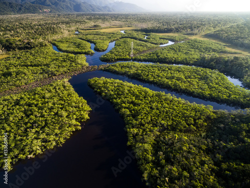 Wall Murals American Famous Place Aerial View of a Rainforest in Brazil