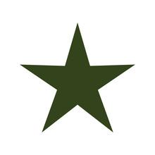 Green Star Isolated Icon Vector Illustration Design