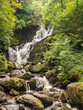 Small waterfall at Kilarney national park, muckross, Republic of Ireland