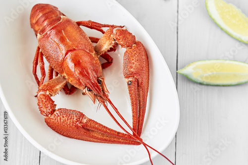 Fine crustacean for dinner Canvas Print