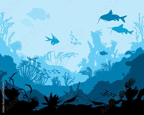 Fotografia Ocean underwater world with animals